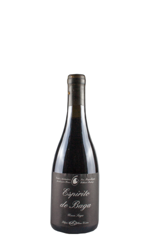 2013 Espirito de Baga 0.5l – Filipa Pato William Wouters